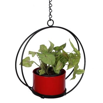 Crescent hanging planter - Red