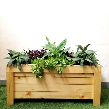 European-wooden-planter-box---big