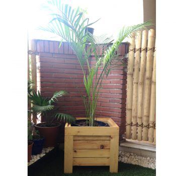 European-wooden-planter-box---small